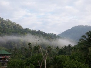 Mist flowed through the hills in the morning