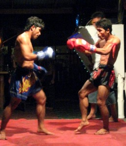 The Thai shin kicks are deadly!